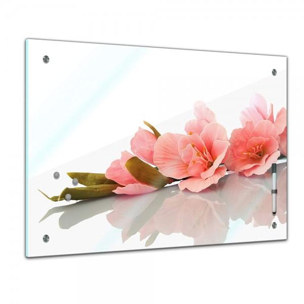 Memoboard - Pflanzen & Blumen - Gladiole