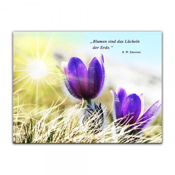 Leinwandbild mit Zitat - Blumen sind das Lächeln der Erde. (R. W. Emerson)