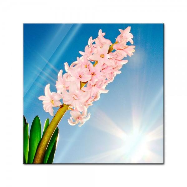 Glasbild - Blume