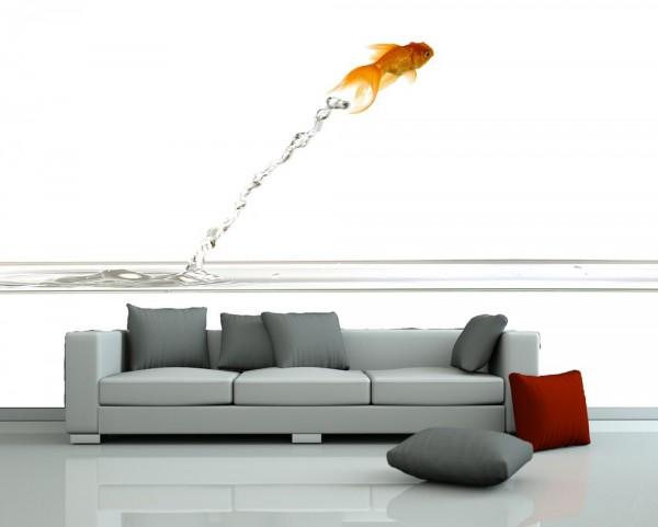 Fototapete - Springender Goldfisch
