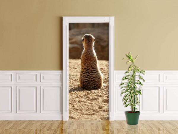 Türaufkleber - Einsames Erdmännchen