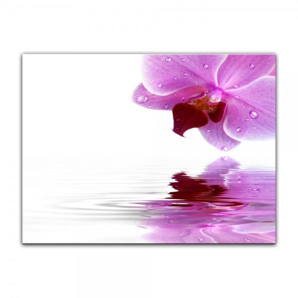 Leinwandbild - Orchideenblüte