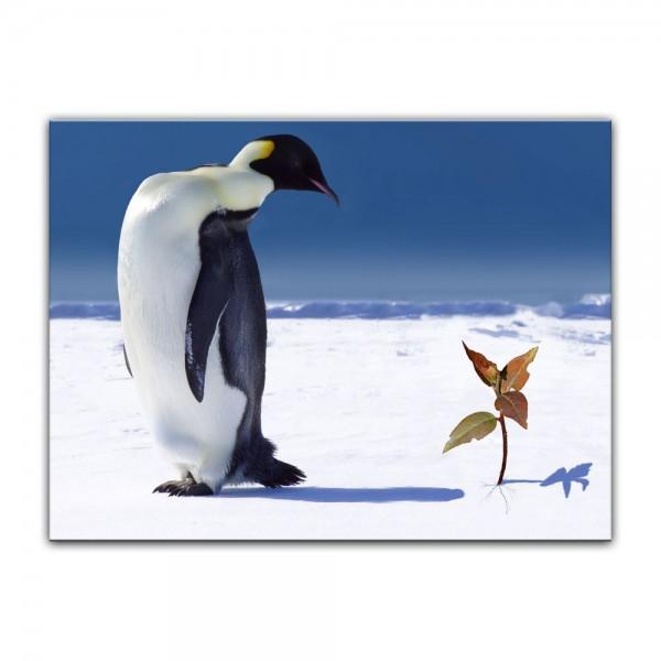 Leinwandbild - Pinguin mit Blume