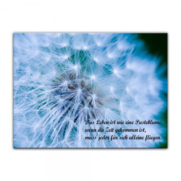 Leinwandbild mit Zitat - Das Leben ist wie eine Pusteblume (Unbekannt)