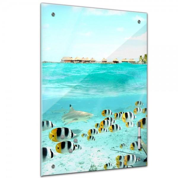 Memoboard - Landschaft - Bora Bora