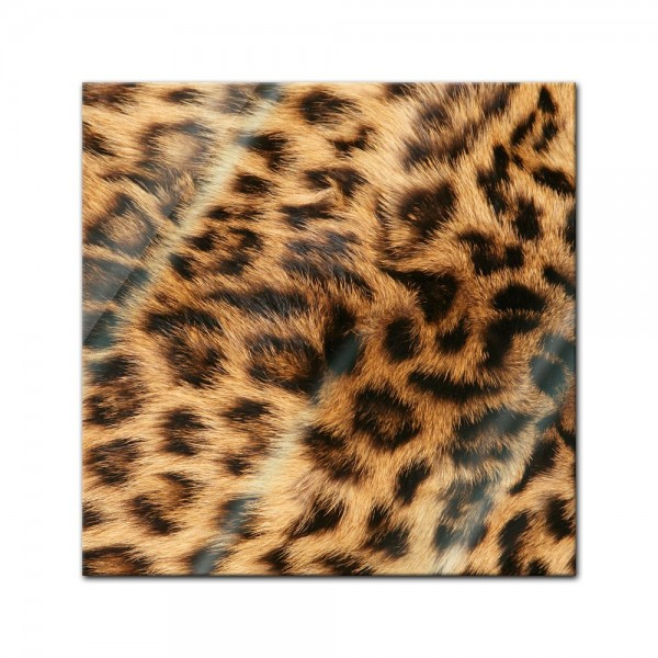 Glasbild - Leopardenfell