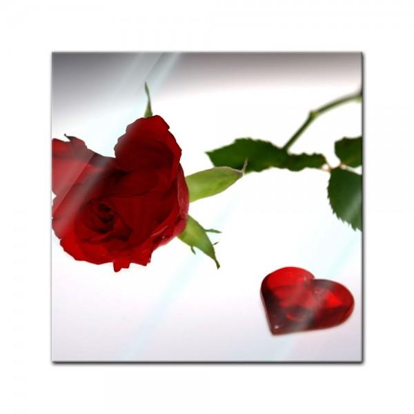 Glasbild - Rose mit Herz