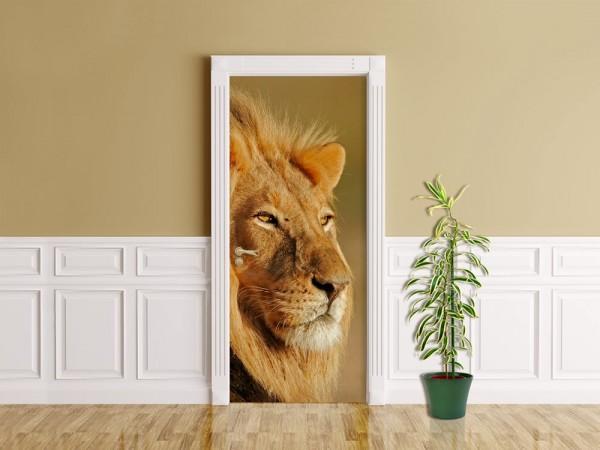 Türaufkleber - Afrikanischer Löwe