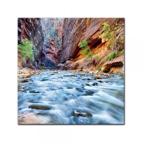 Glasbild - Blick auf den Virgin River im Zion National Park - Utah USA