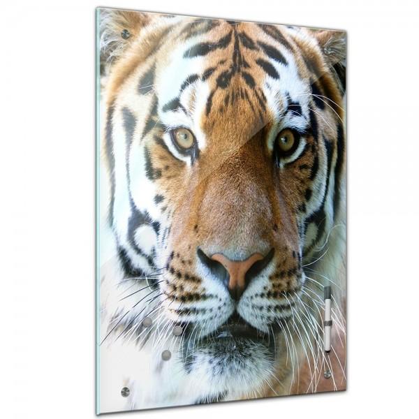 Memoboard - Tiere - Tigergesicht