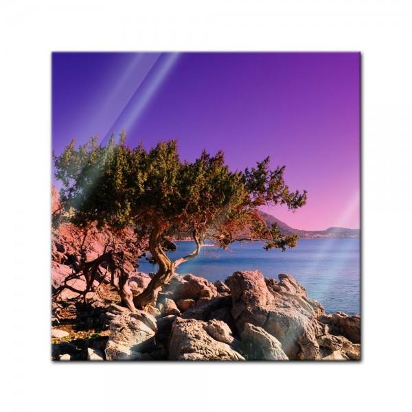 Glasbild - Mediteraner Baum - Rhodos Griechenland