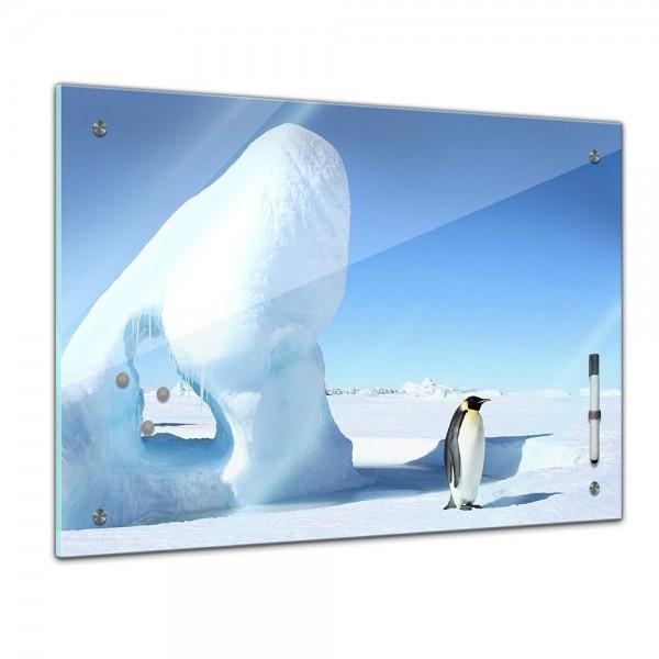 Memoboard - Tiere - Pinguin im Eis