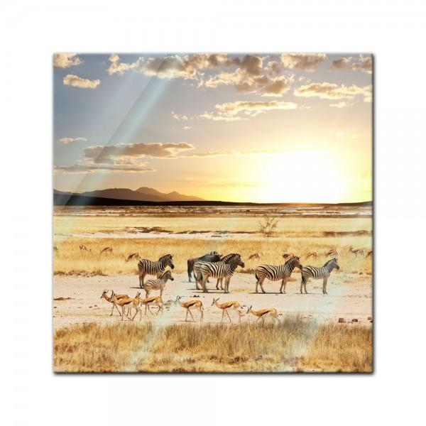 Glasbild - Afrikanische Savanne